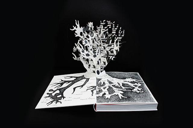 Creatività: libro popup